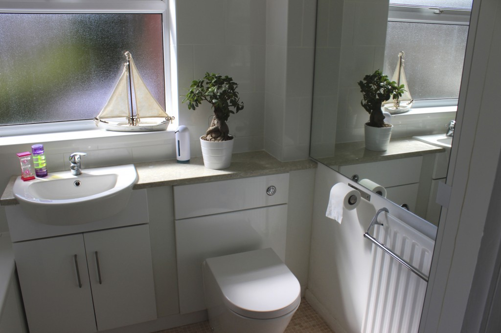 Keep House Plants in the Bathroom